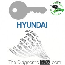 Activation logiciel Hyundai TDB1000